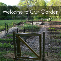 welcome to our garden