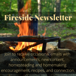 Fireside Newsletter